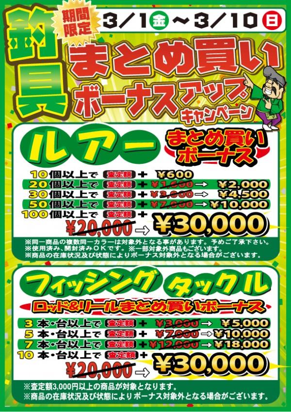 20130301-0310-3man