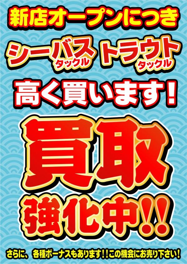 シーバス・トラウト用品強化 (1)