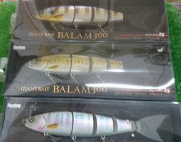 バラム300 エギ等 (茨木店)